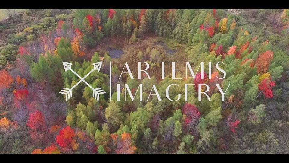 Artemis Imagery